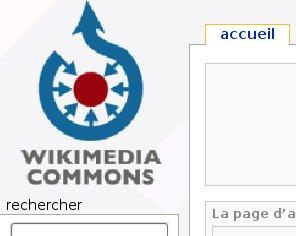 logoWP-C.jpg